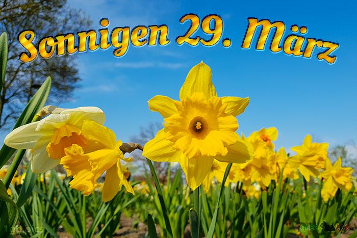 Sonnigen 29 Maerz Bild - 1gb.pics