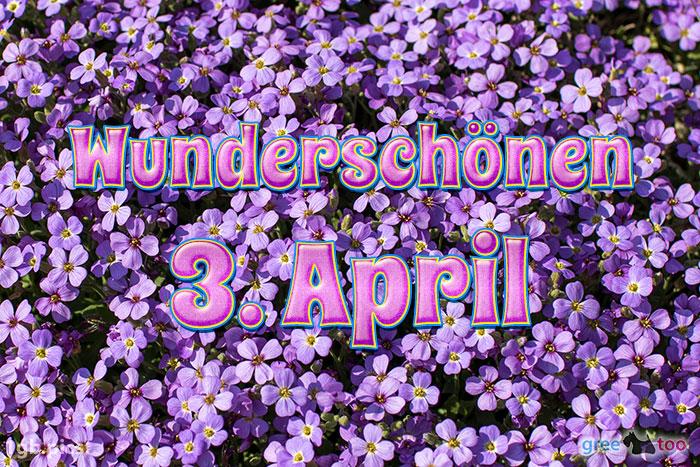 Wunderschoenen 3 April Bild - 1gb.pics