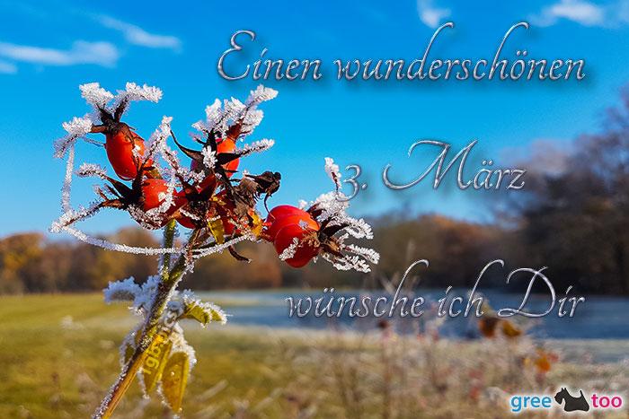 Einen Wunderschoenen 3 Maerz Bild - 1gb.pics