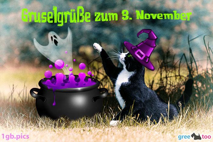 Katze Gruselgruesse Zum 3 November Bild - 1gb.pics