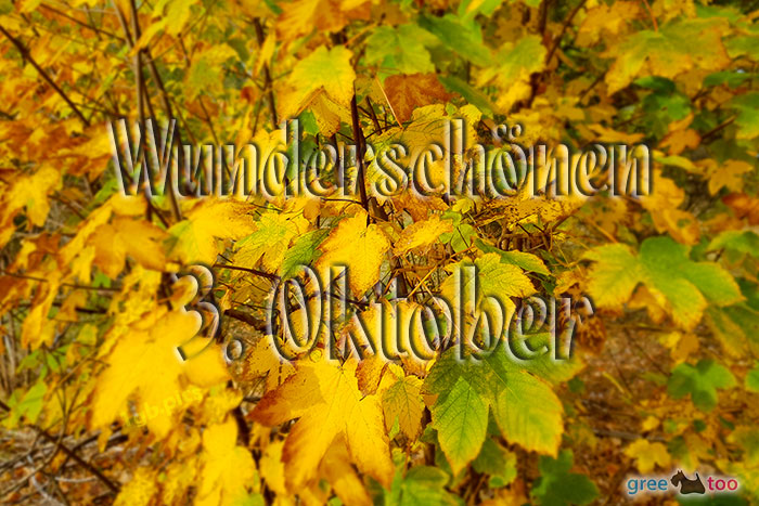 Wunderschoenen 3 Oktober Bild - 1gb.pics