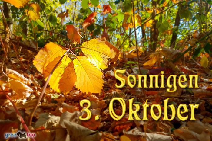 Sonnigen 3 Oktober Bild - 1gb.pics