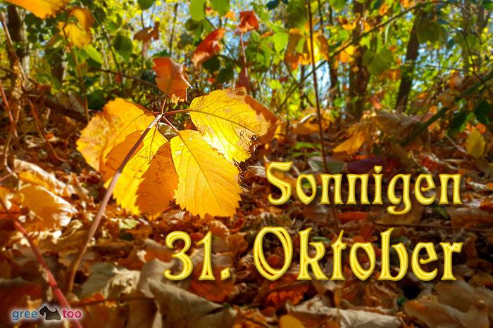 Sonnigen 31 Oktober Bild - 1gb.pics