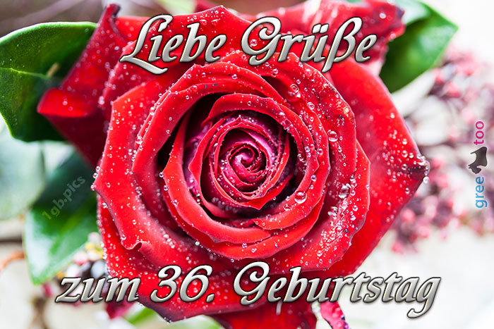 Zum 36 Geburtstag Bild - 1gb.pics