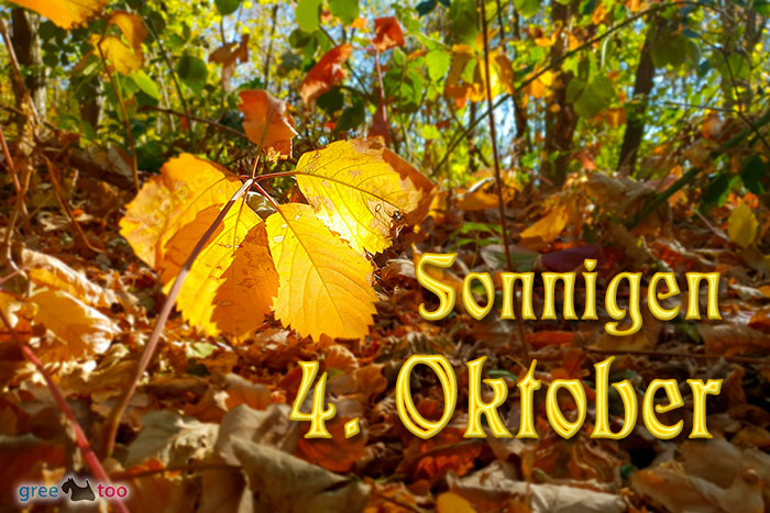 Sonnigen 4 Oktober Bild - 1gb.pics