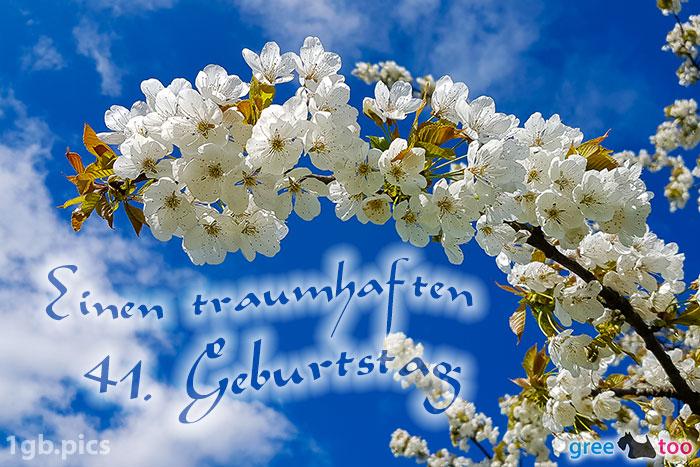 Kirschblueten Einen Traumhaften 41 Geburtstag Bild - 1gb.pics