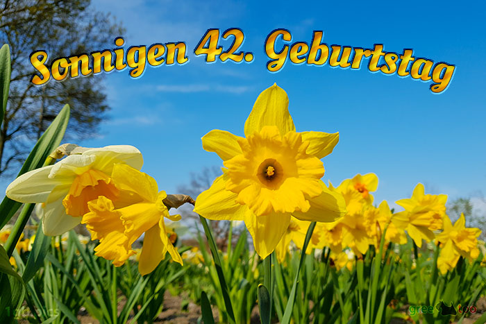 Sonnigen 42 Geburtstag Bild - 1gb.pics