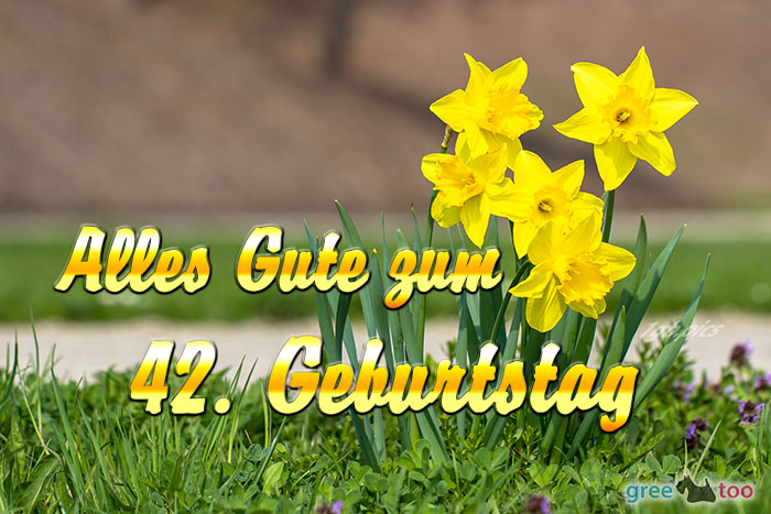 Alles Gute 42 Geburtstag Bild - 1gb.pics
