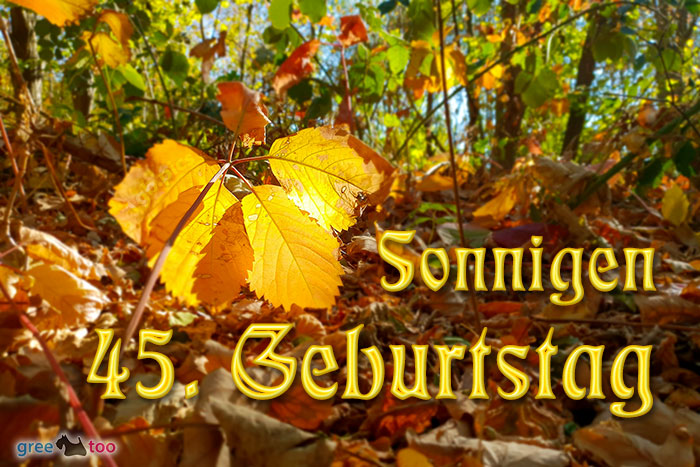 Sonnigen 45 Geburtstag Bild - 1gb.pics
