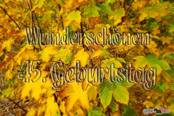 Wunderschoenen 45 Geburtstag Bild - 1gb.pics