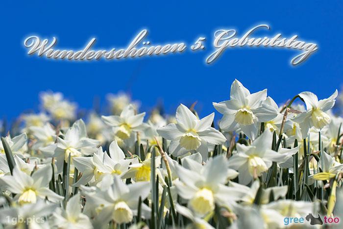 Wunderschoenen 5 Geburtstag Bild - 1gb.pics