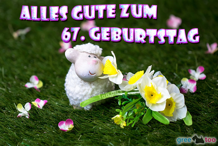 Alles Gute 67 Geburtstag Bild - 1gb.pics