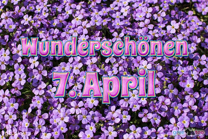 Wunderschoenen 7 April Bild - 1gb.pics