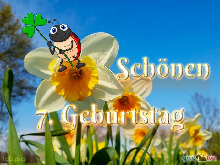 Schoenen 7 Geburtstag Bild - 1gb.pics