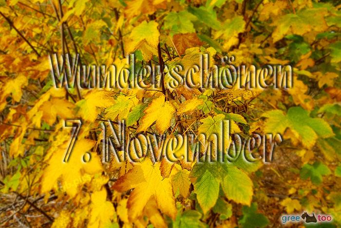 Wunderschoenen 7 November Bild - 1gb.pics