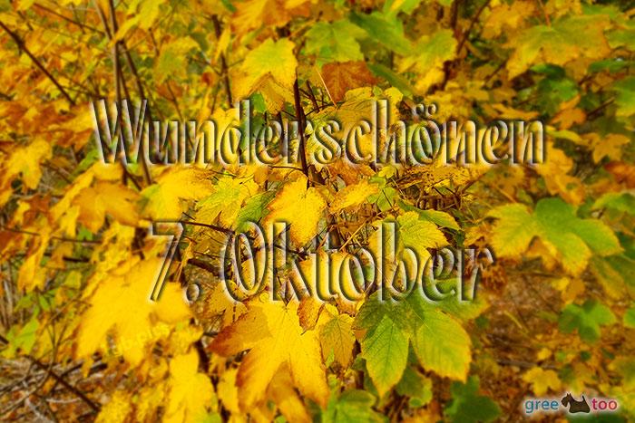 Wunderschoenen 7 Oktober Bild - 1gb.pics