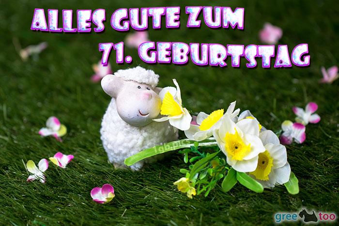 Alles Gute 71 Geburtstag Bild - 1gb.pics