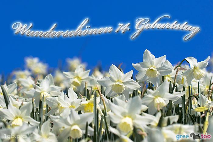 Wunderschoenen 74 Geburtstag Bild - 1gb.pics