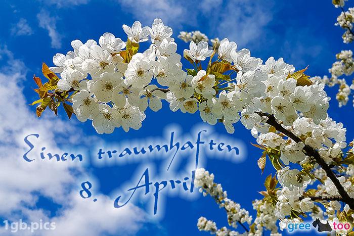 Kirschblueten Einen Traumhaften 8 April Bild - 1gb.pics