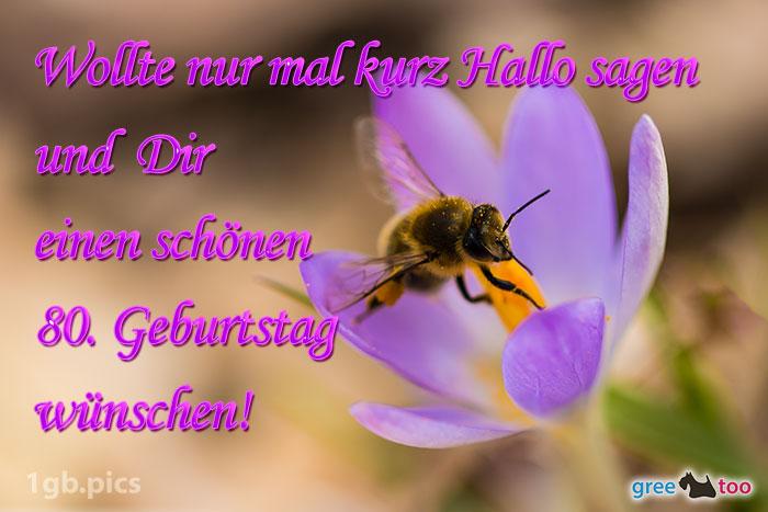 Krokus Biene Einen Schoenen 80 Geburtstag Bild - 1gb.pics