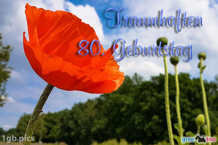 Mohnblume Traumhaften 80 Geburtstag Bild - 1gb.pics