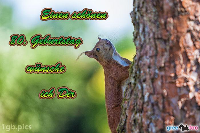Eichhoernchen Einen Schoenen 80 Geburtstag Bild - 1gb.pics