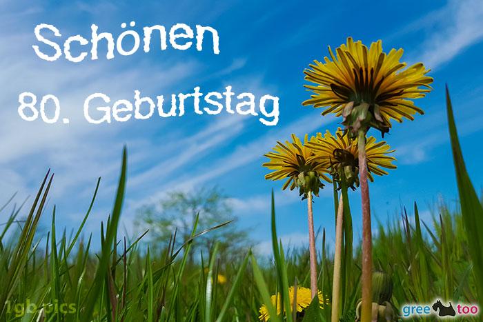 Loewenzahn Himmel Schoenen 80 Geburtstag Bild - 1gb.pics