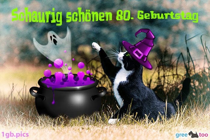 Katze Schaurig Schoenen 80 Geburtstag Bild - 1gb.pics