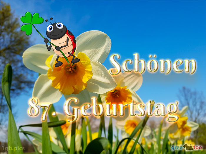 Schoenen 87 Geburtstag Bild - 1gb.pics