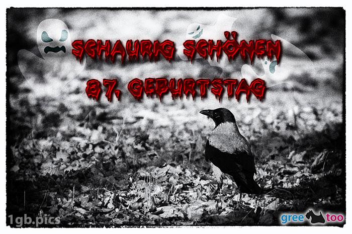 Kraehe Schaurig Schoenen 87 Geburtstag Bild - 1gb.pics