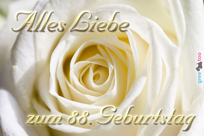 Zum 88 Geburtstag Bild - 1gb.pics
