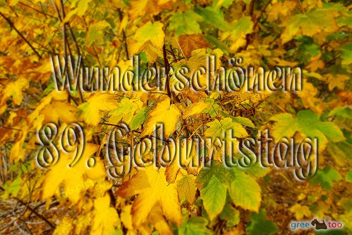 Wunderschoenen 89 Geburtstag Bild - 1gb.pics