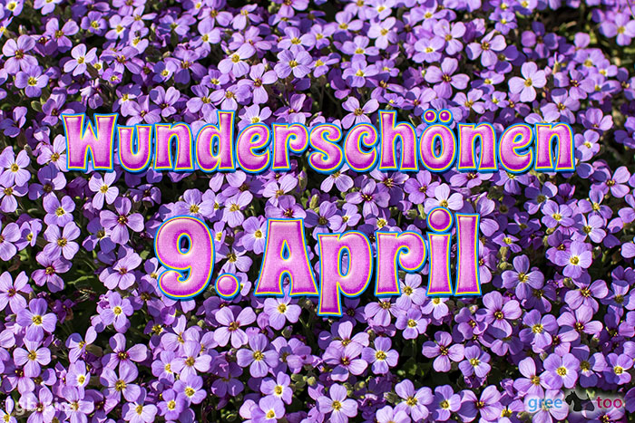 Wunderschoenen 9 April Bild - 1gb.pics