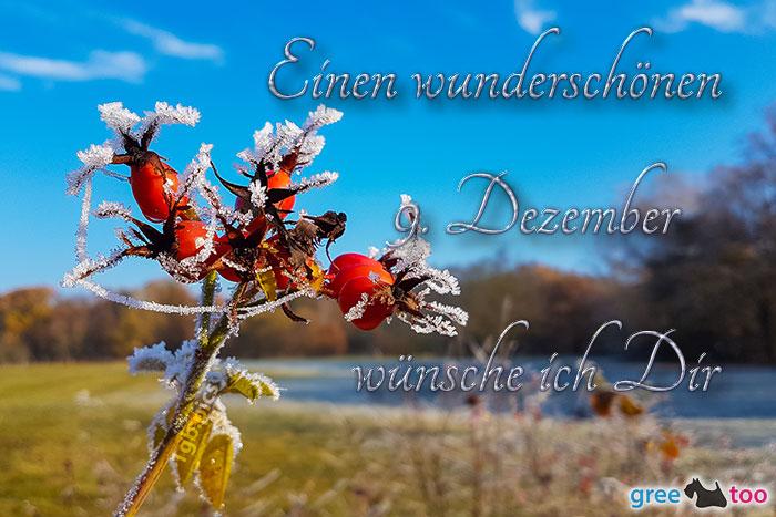 Einen Wunderschoenen 9 Dezember Bild - 1gb.pics