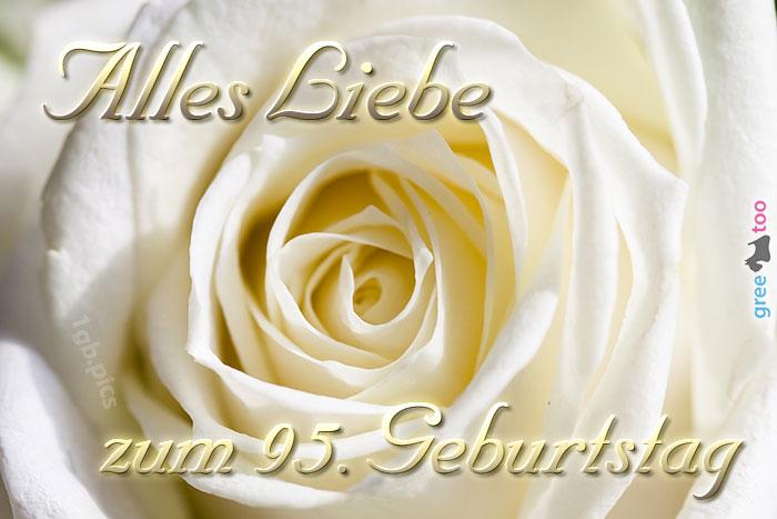 Zum 95 Geburtstag Bild - 1gb.pics