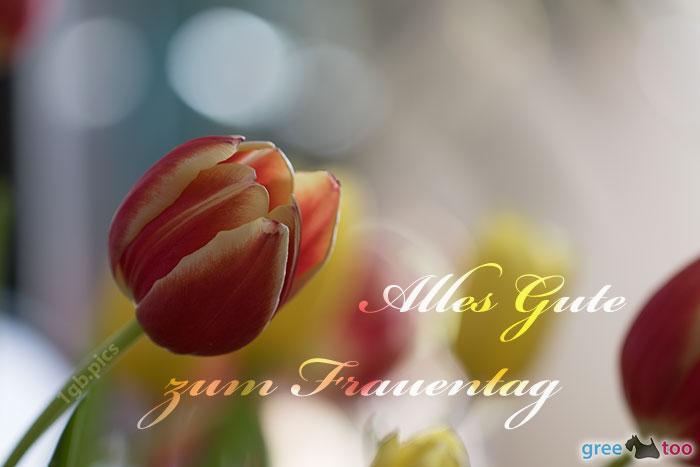 Alles Gute zum Frauentag von 1gbpics.com