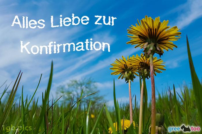 Loewenzahn Himmel Alles Liebe Zur Konfirmation Bild - 1gb.pics