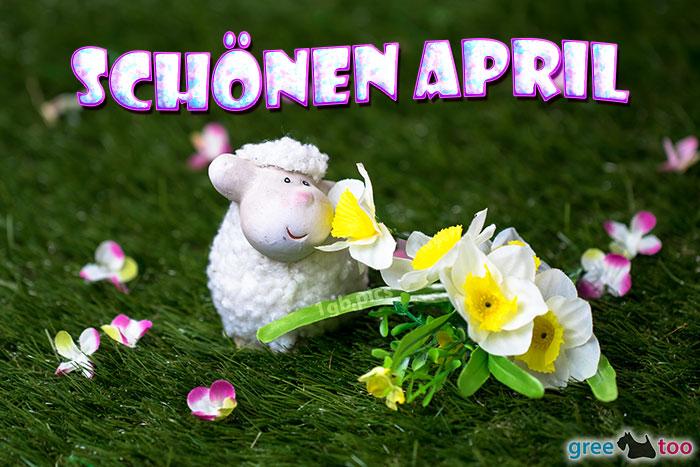 Schoenen April Bild - 1gb.pics