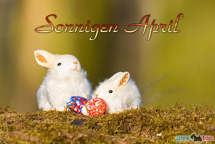 Sonnigen April Bild - 1gb.pics