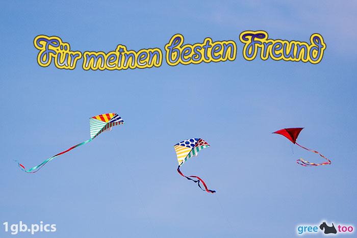 Drachen Fuer Meinen Besten Freund Bild - 1gb.pics