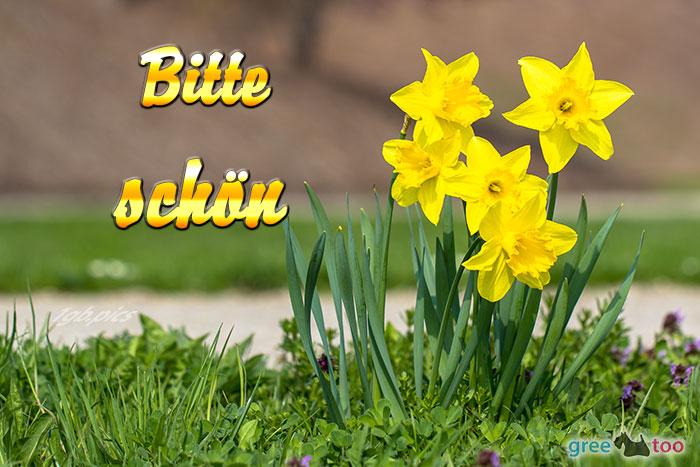 Bitte von 1gbpics.com