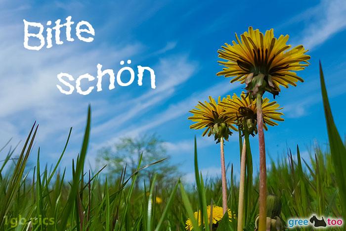Loewenzahn Himmel Bitte Schoen Bild - 1gb.pics
