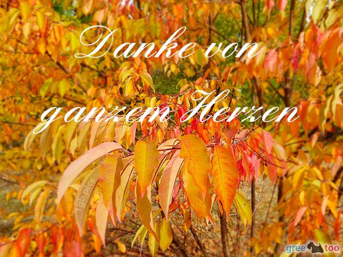 Danke Von Ganzem Herzen Bild - 1gb.pics