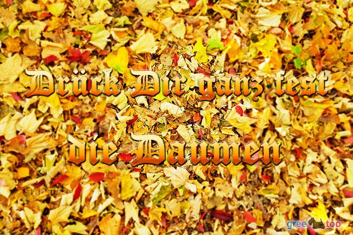 Daumen drücken von 1gbpics.com