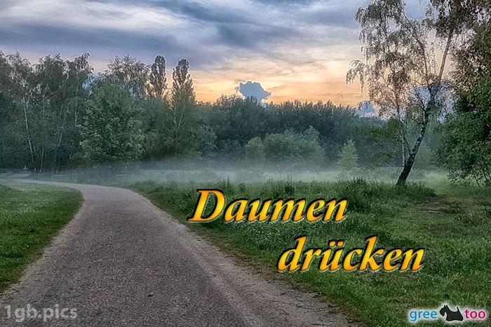 Nebel Daumen Druecken Bild - 1gb.pics