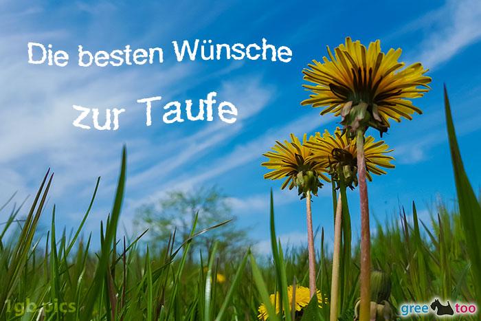 Loewenzahn Himmel Die Besten Wuensche Zur Taufe Bild - 1gb.pics