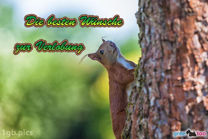 Eichhoernchen Die Besten Wuensche Zur Verlobung Bild - 1gb.pics