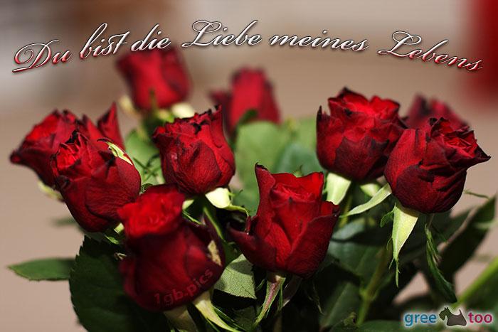 Bilder liebe meines lebens Du bist