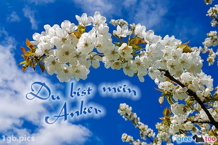 Kirschblueten Du Bist Mein Anker Bild - 1gb.pics