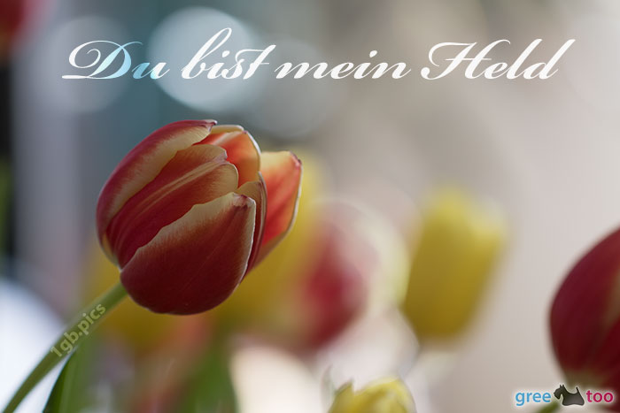 Du Bist Mein Held Bild - 1gb.pics